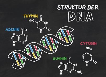 Struktur der DNA auf einer Schiefertafel